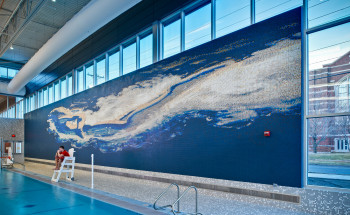 Iowa State University Swimming Pool Mural