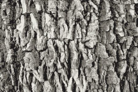 Grey Pine Bark Contemporary Textural Mosaic by Artaic