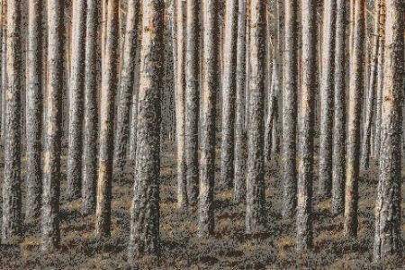 Woodspire Java Tile Mural